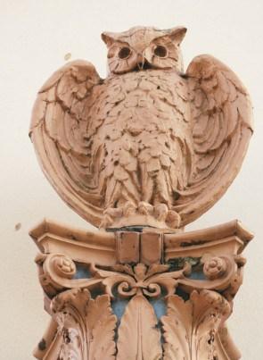 Dot-owl