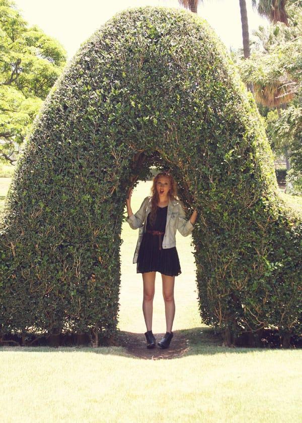 Picnic-topiary